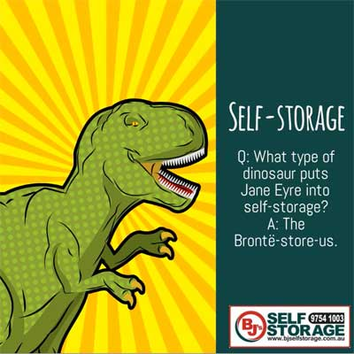 Denise Gibb Content Writer pop art meme example BJ's Self Storage 5