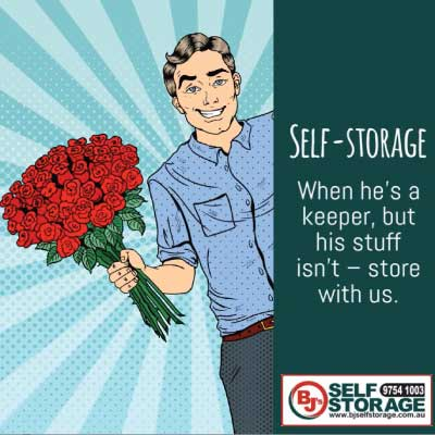 Denise Gibb Content Writer pop art meme example BJ's Self Storage 8