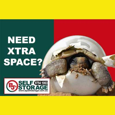 Denise Gibb Content Writer BJS Self Storage meme 2 box. Feeling the squeeze meme 3