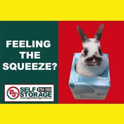 Denise Gibb Content Writer BJS Self Storage meme 2 box. Feeling the squeeze meme.