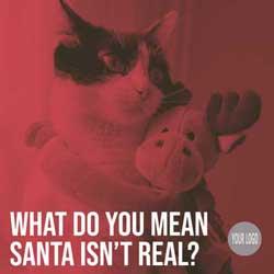 What do you mean Santa isn't real? meme